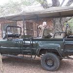Erste Safari mit dem Bushcar