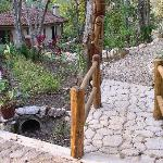 Nice walkways and paths around the property