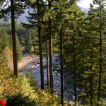 """""""View Of The Snoqualmie River """""""
