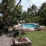 Great garden & pleasant pool