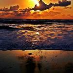Coho Oceanfront photo