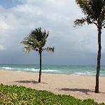 Beach-High Noon