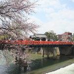 中橋と桜①