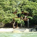 view of the tree hut from in the water