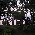 room-night view