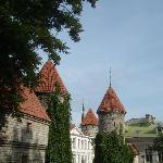 Towers in Tallinn