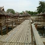 floating bungalows  @ Pirates Bay