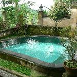 Private plunge pool within walled villa