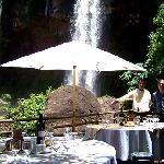 """Restauraten """"La Selva"""""""