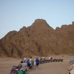 Photo de Sharm Day Tours