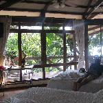 Jungle views from the bedroom