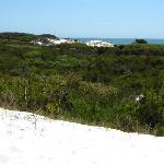 View from atop the dunes
