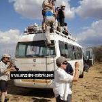 campus safari adventures