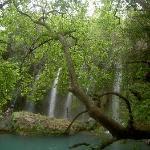 Wasserfälle von leichter Erhöhung aus
