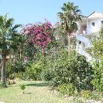 Photo of Hotel Pataros