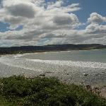 Curio Bay View