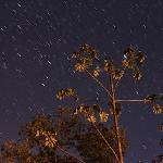 The night sky at El Sol Verde