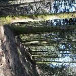 randonnée environnement gite
