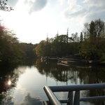 静かな井の頭公園