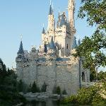 Near Disney