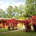 A fountain, fire red bushes and our room