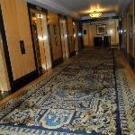 Corridor/lift loby