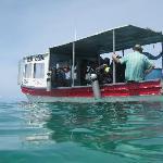 Dive Boat...La Orca