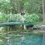 ersatz du pont de Monet à Giverny