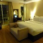 Elegant, spacious  room