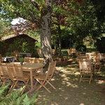Photo of La Table