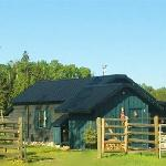 "Privacy in the ""Corral Cottage"" with horse paddock, hammock, outdoor furniture, BBQ"