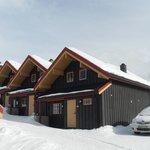 Bergo Cabin 3