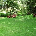 Serene Gardens 1