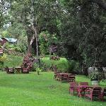 Serene Gardens 2