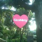 Cocoberry Sign
