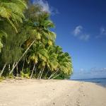 Sunhaven's Beach