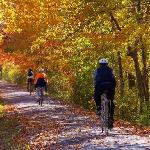 Cycling - autumn