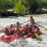 Fun on the Animas River