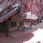 Campo tendato al safari