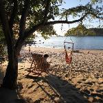 hammocks on the beach.