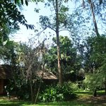 Tunza Lodge cottage ;) sweet