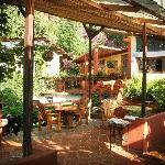restaurant (hummingbirds will have breakfast near you)