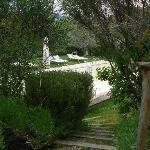 Photo of La Cardoncina