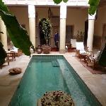 Altro particolare del Giardino con la piscina