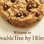 Our Welcoming Signature Freshly Baked Choclate Chip Cookie Upon Check In