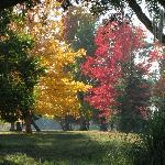 Le parc de Malleret