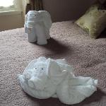 Elephant and doggie towels!