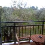 The Zafira room balcony - basically they built the complex in an olive tree orchard