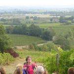 Le vignoble bio/ Touring the organic vineyards at Haut Garrigue