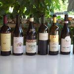 great barolos